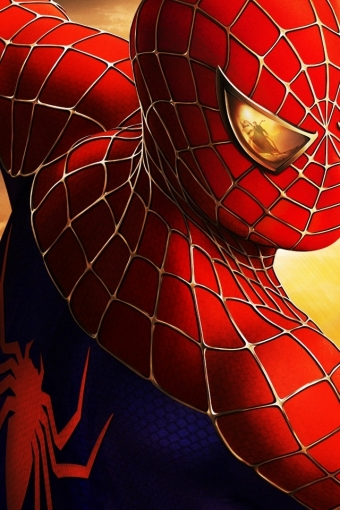Spiderman Hd Wallpaper For Movie Spider Man Poster Black Wallpapers 1080p