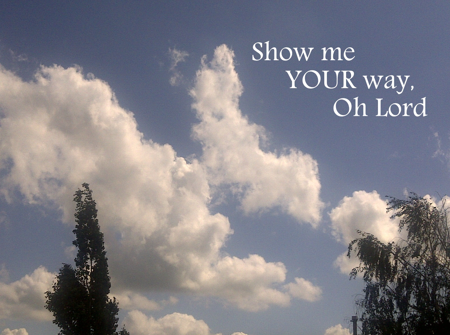 Show Me Your Way Wallpaper   Christian Wallpapers and Backgrounds 1568x1168