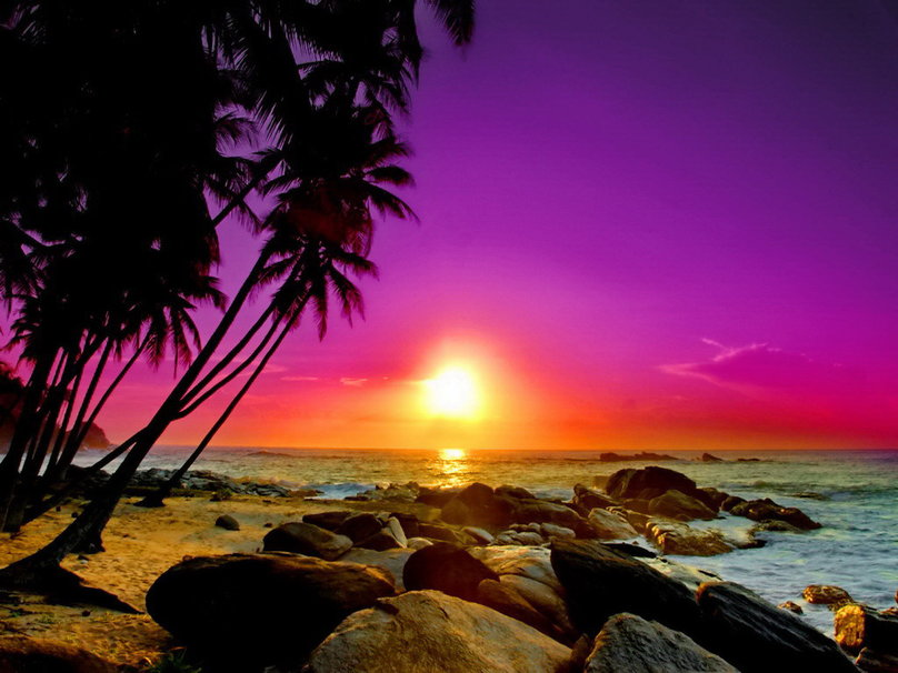 Tropical Island Sunset Wallpaper Tropical Sunset Wallpaper 808x606