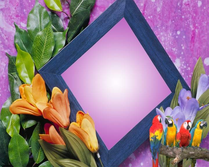 Frames Designs Wallpapers Download DOWNLOAD WALLPAPERS HD FREE 720x576