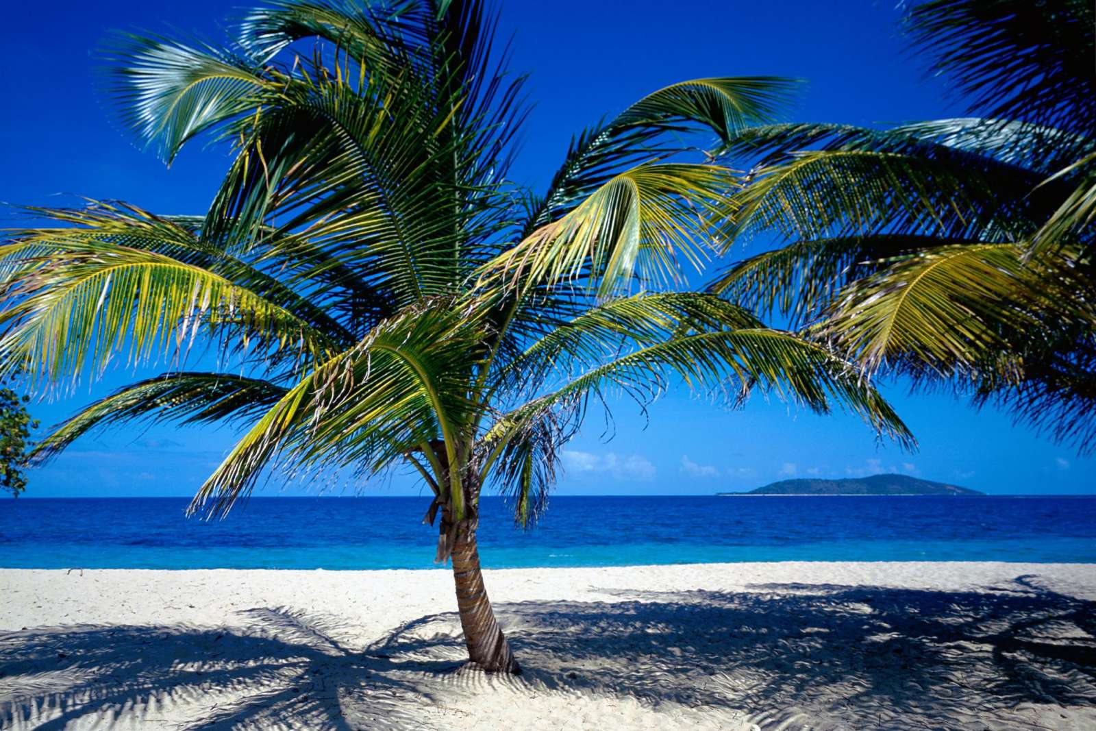 Croix US Virgin Islands Wallpapers Photos Pictures and Backgrounds 1600x1067