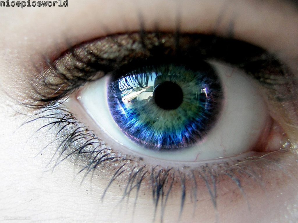 beautiful eyes wallpapersbeautiful eyeswallpapers 1024x768