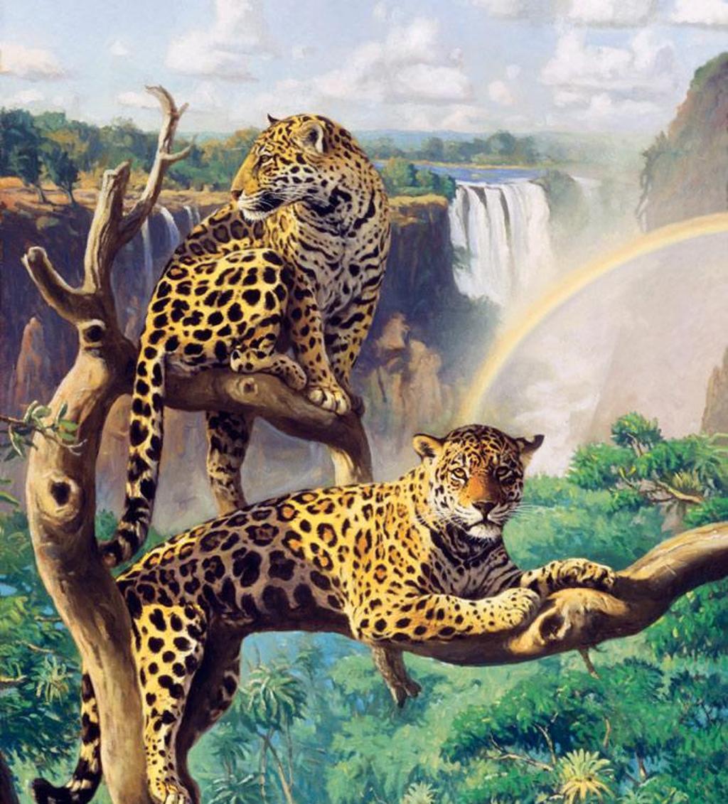 Amazon Leopard Mural Wallpaper Murals 1024x1131 pixel Popular HD 1024x1131