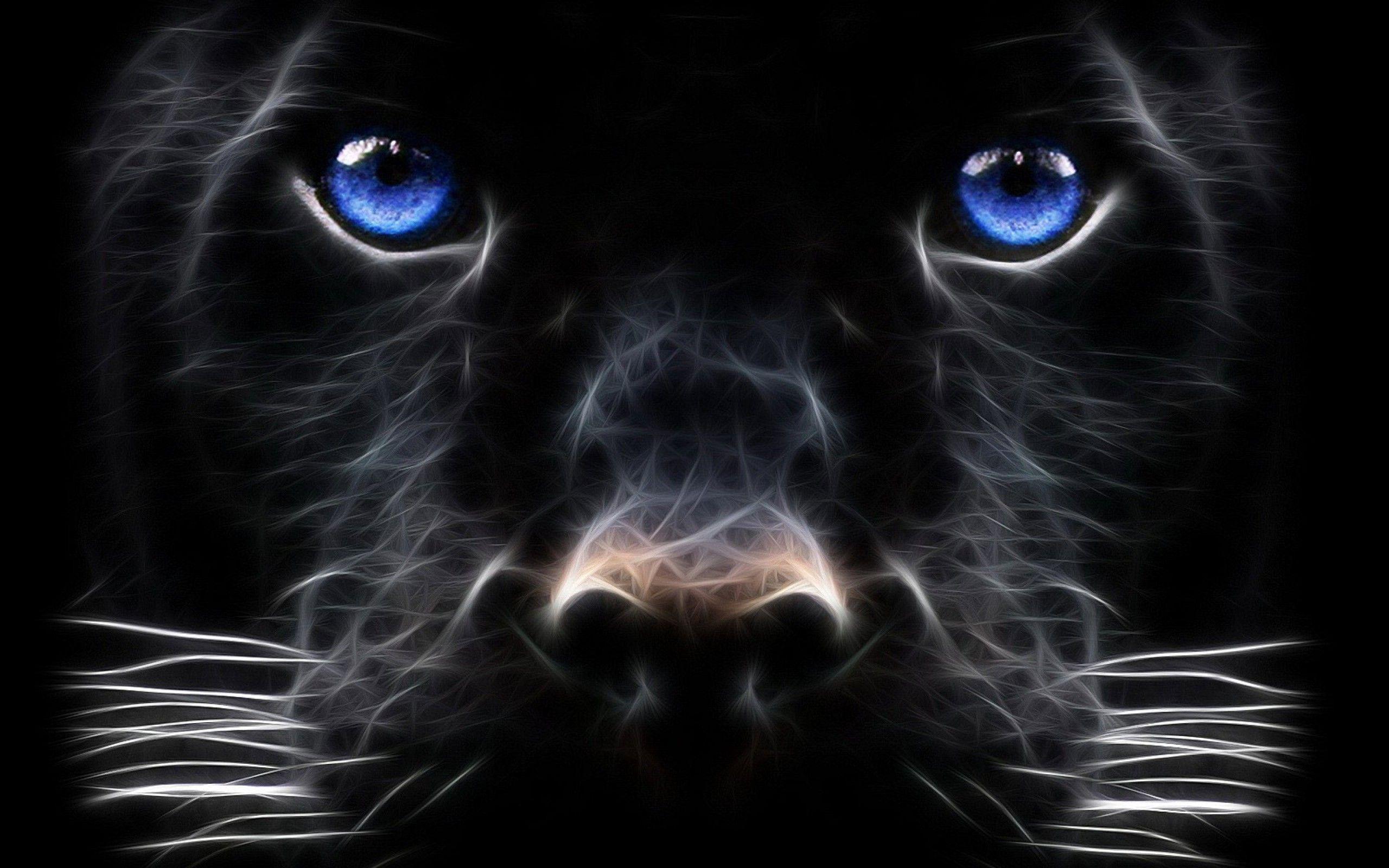 Black Leopard Backgrounds 2560x1600