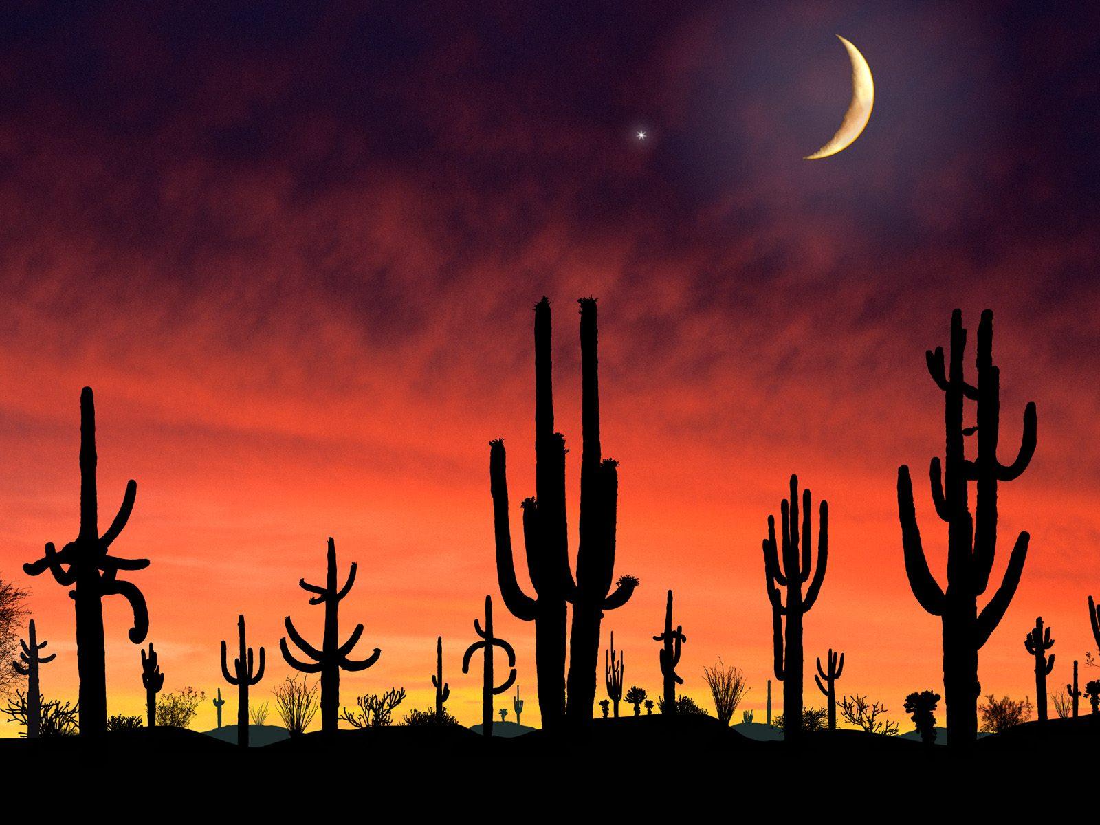 National Park Arizona   Computer Art Photography Desktop Wallpapers 1600x1200