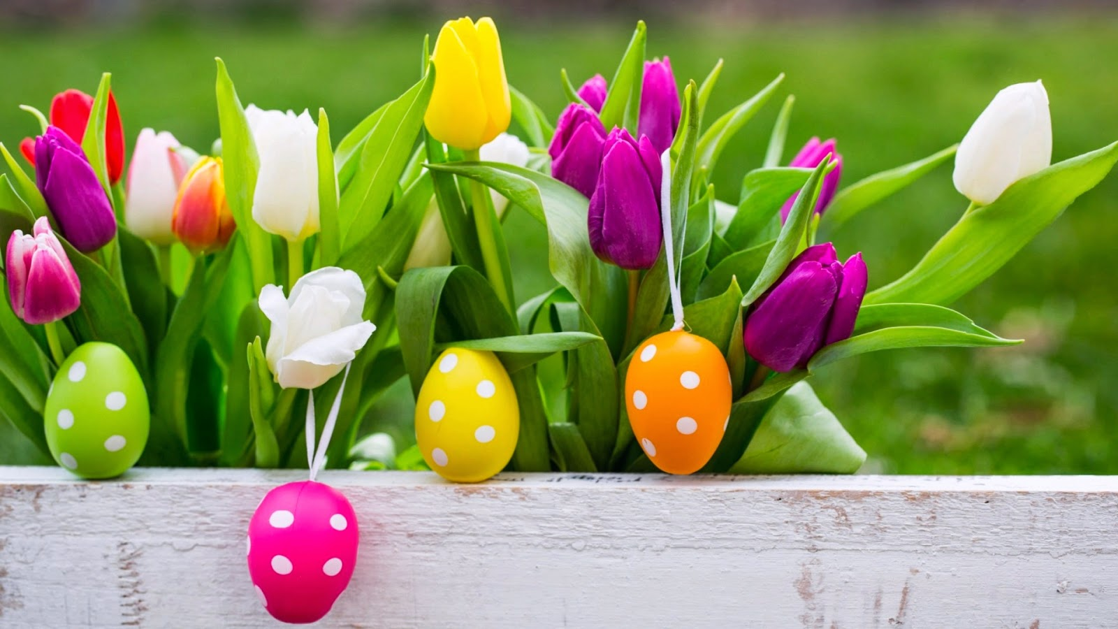 Easter Wallpapers Screensavers HD Easter Images 1600x900