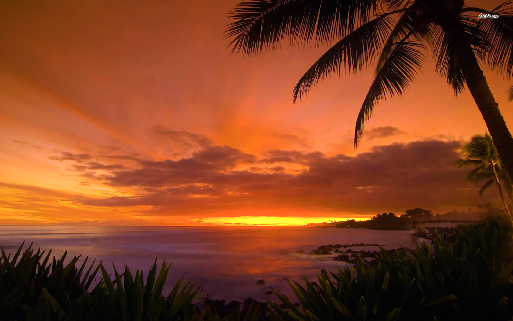 [40+] Sunset Hawaii Beach Wallpapers on WallpaperSafari