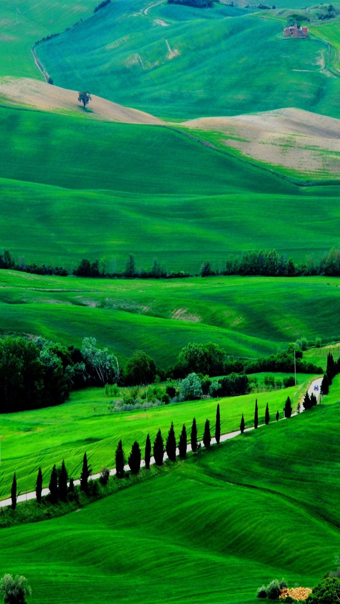 green view Landscape wallpaper Beautiful nature wallpaper 1080x1920