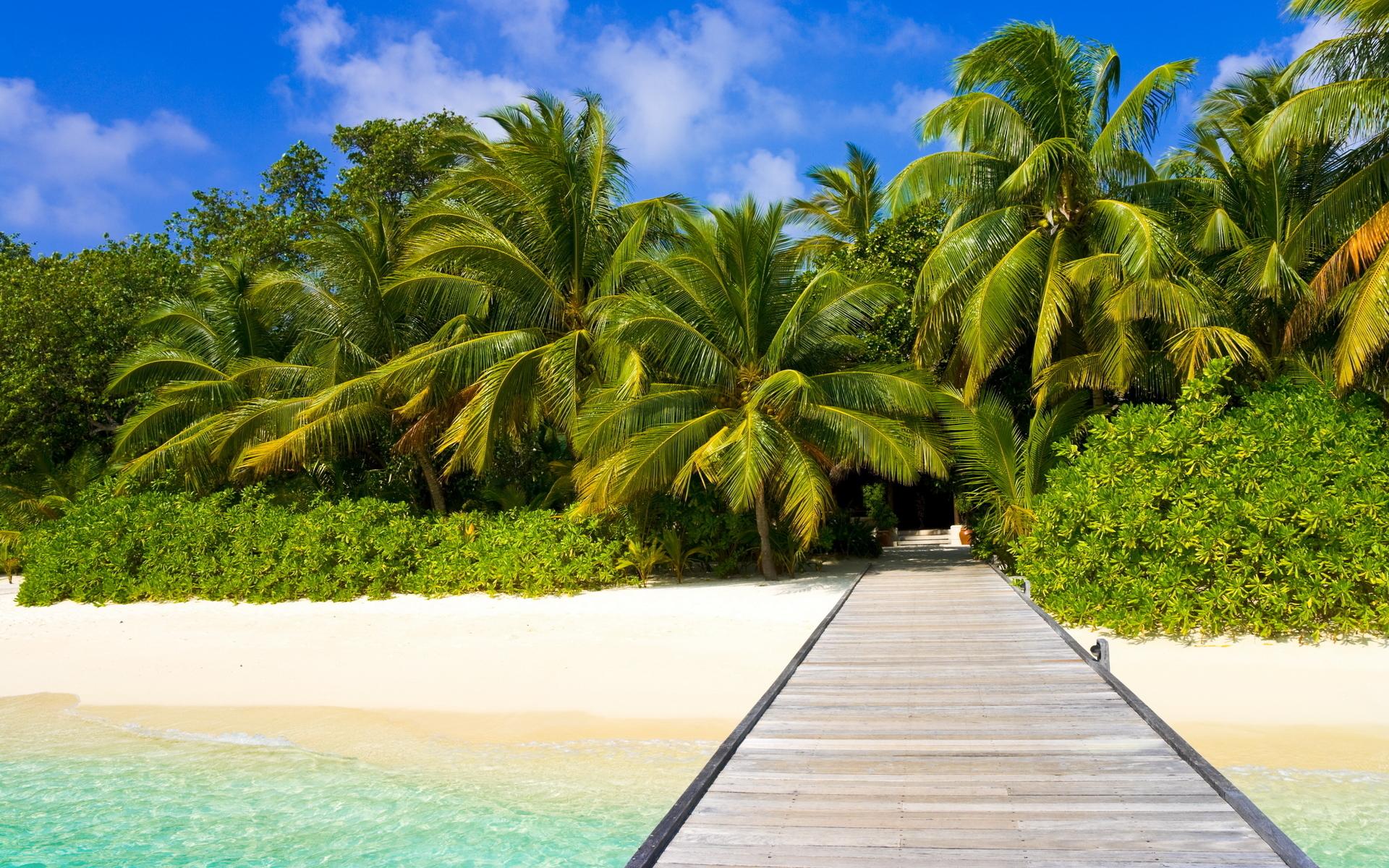 природа песок пляж дома море пальмы  № 3778393 загрузить