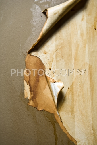 Royalty  Images Wallpaper Peeling Off Of Wall 338x506