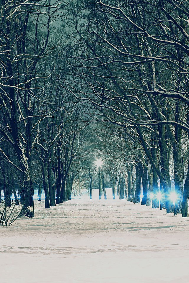 Winter Christmas Scenery Iphone Background Hd 5 Wallpapers 640x960