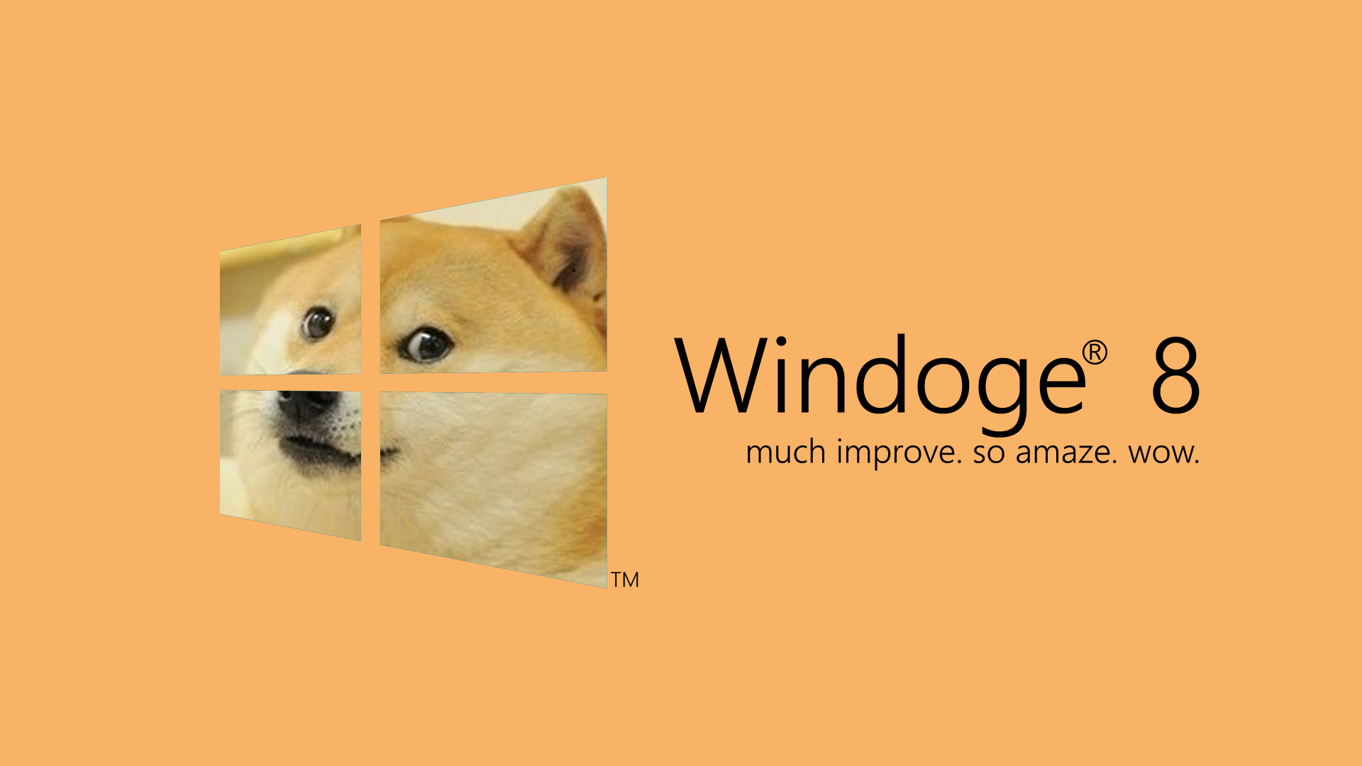 Wndoge 8   Doge Wallpaper 1920x1080 17571 1920x1080