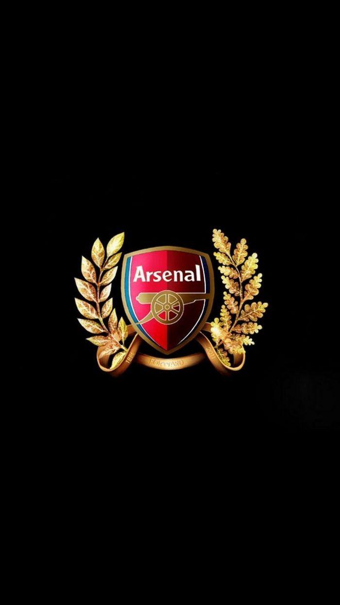 Arsenal Logo Wallpaper Android   2019 Football Arsenal 700x1244