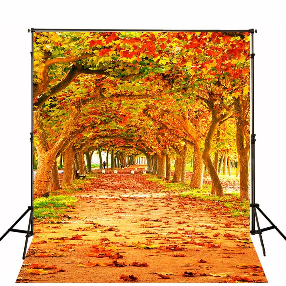 Autumn Leaves Backdrops Photographic Backgrounds Children Photo 1000x1000