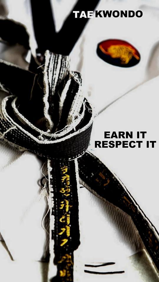 Taekwondo Black Belt 2587762   HD Wallpaper Backgrounds Download 540x960