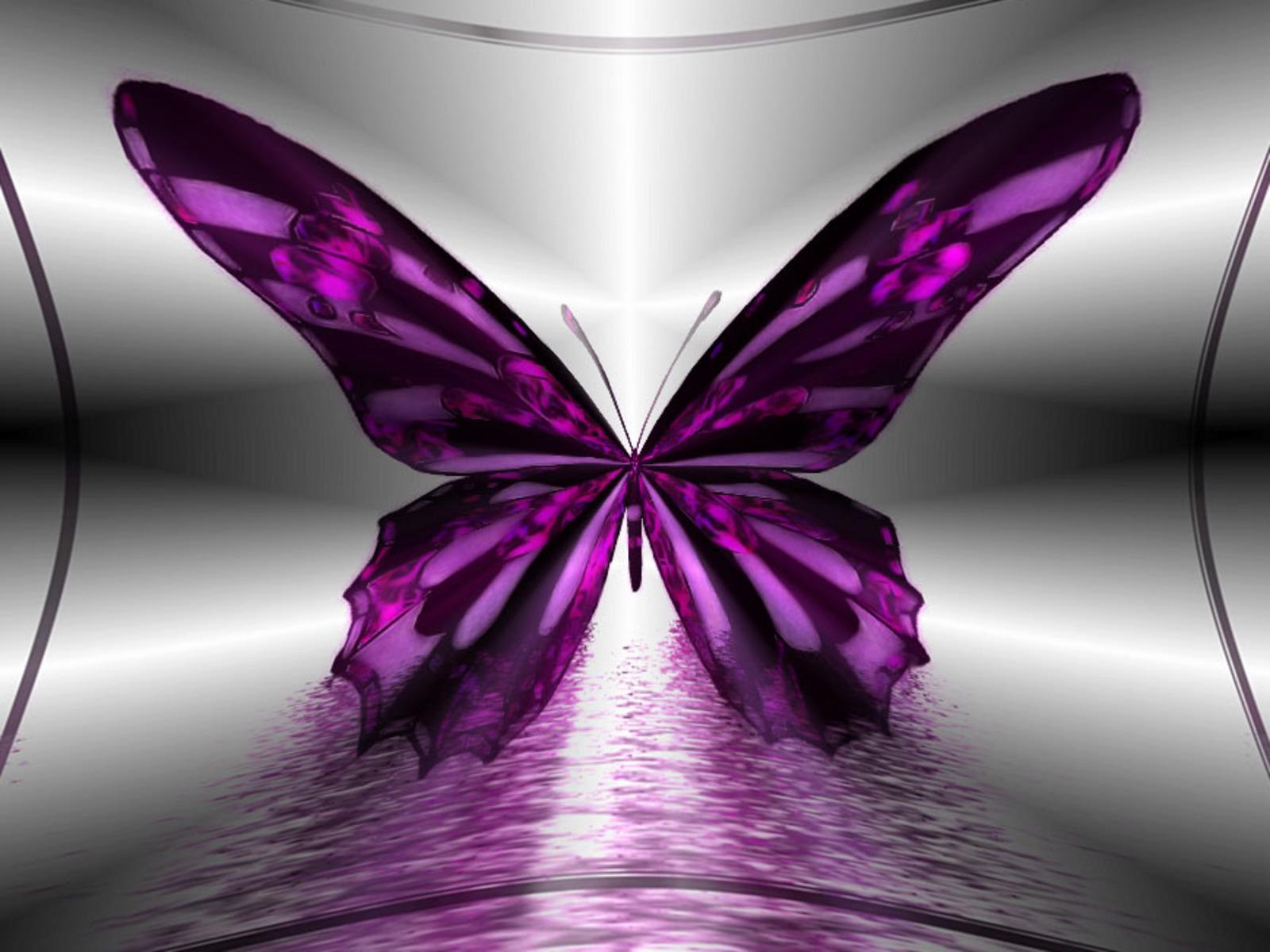 amazing purple butterfly hd pc wallpaper 1600x1200