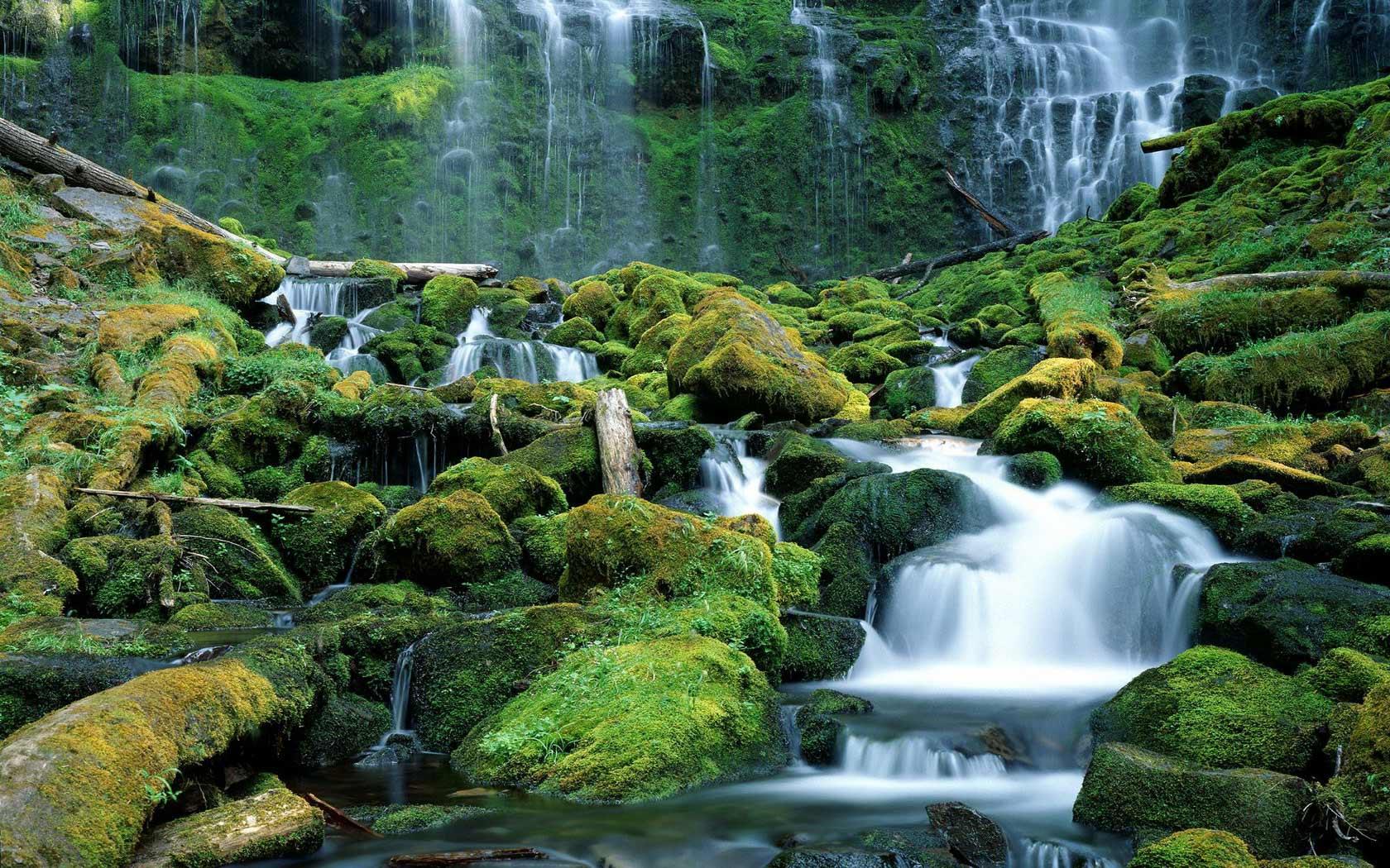 Oregon desktop wallpaper wallpapersafari - Oregon nature wallpaper ...