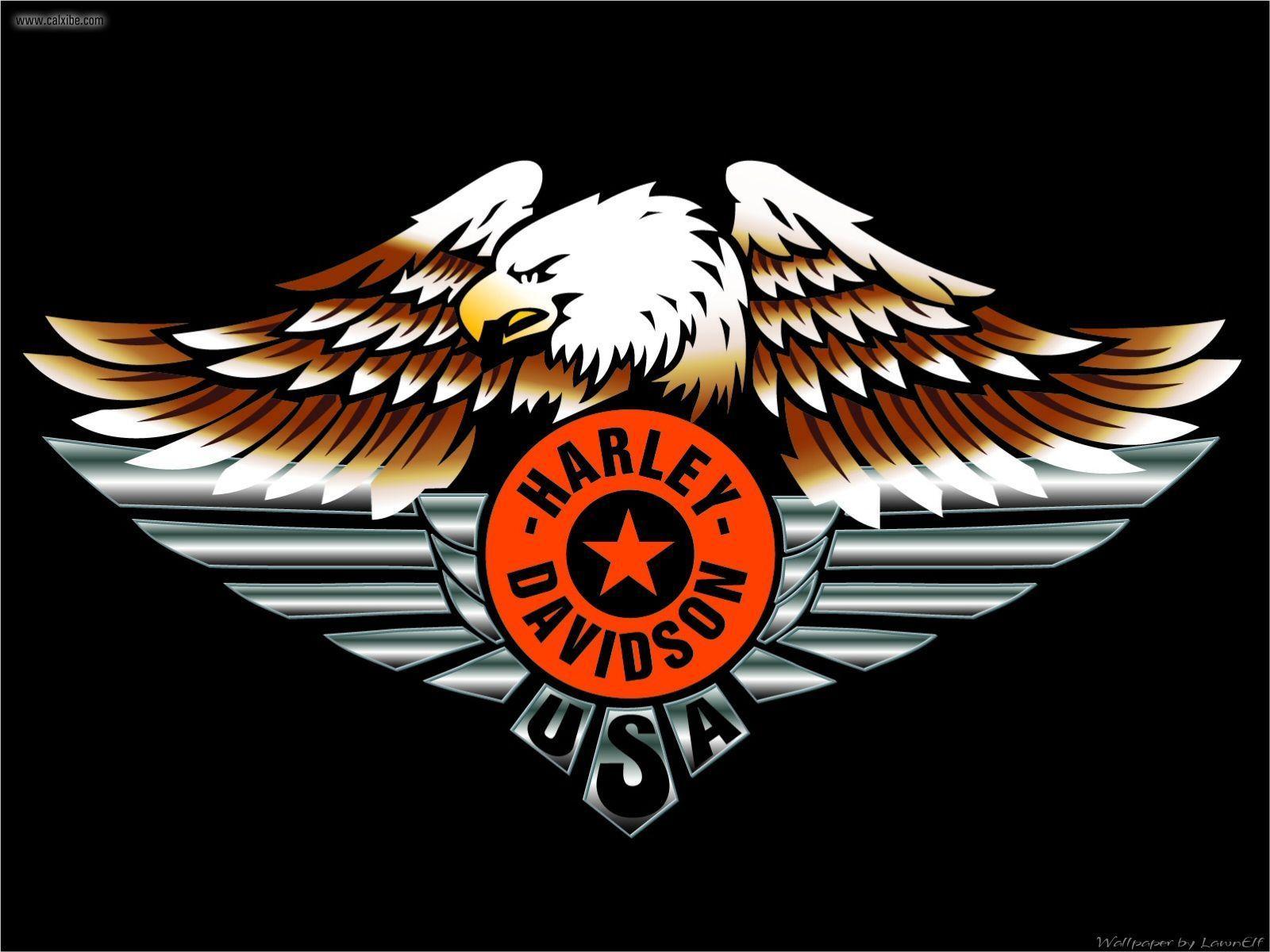Harley Davidson Eagle Wallpaper 7500 Hd Wallpapers in Bikes   Imagesci 1600x1200
