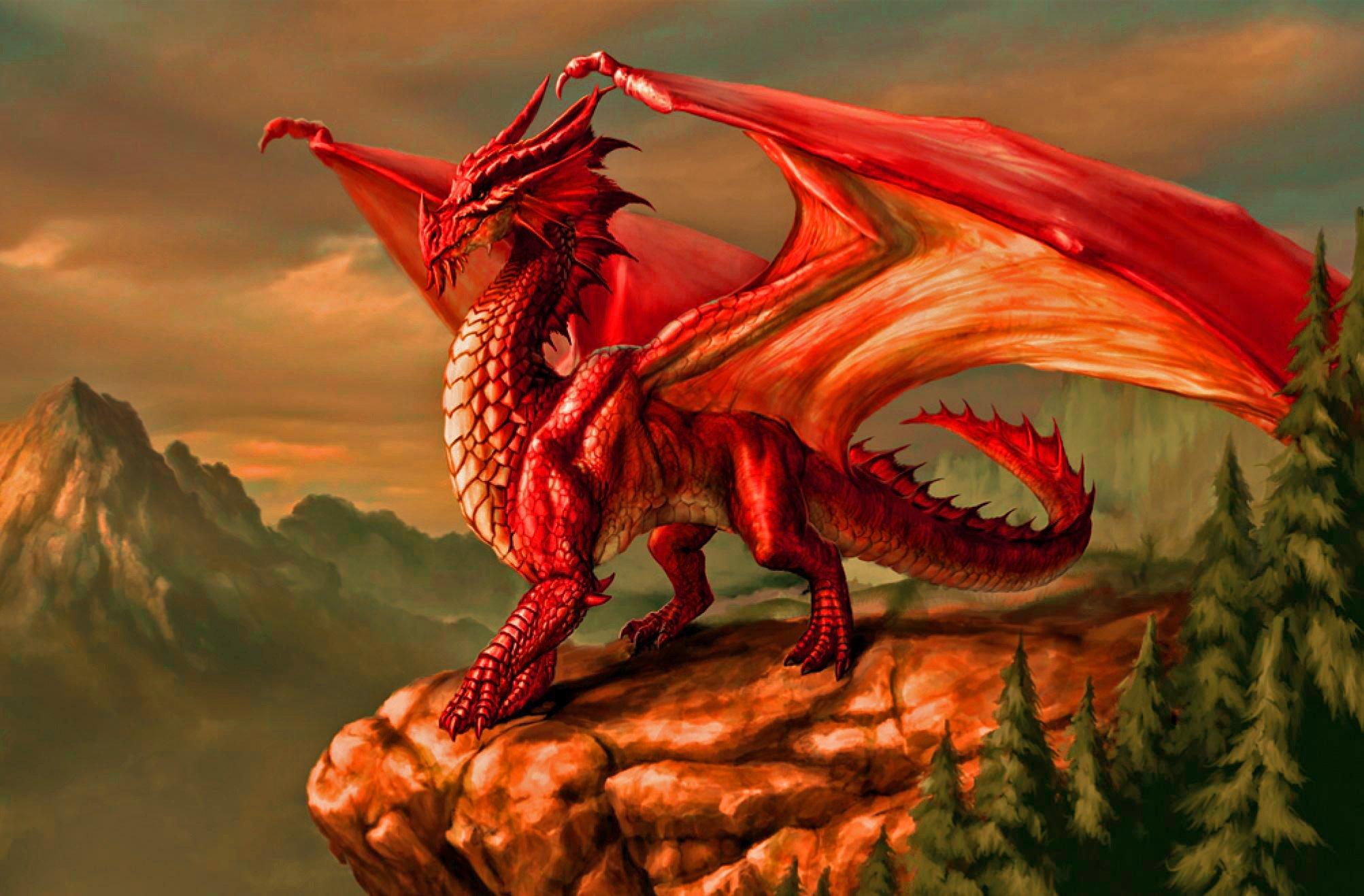 DRACONOMICON METALLIC DRAGONS Dungeons dragons metallic draconomicon 2005x1317