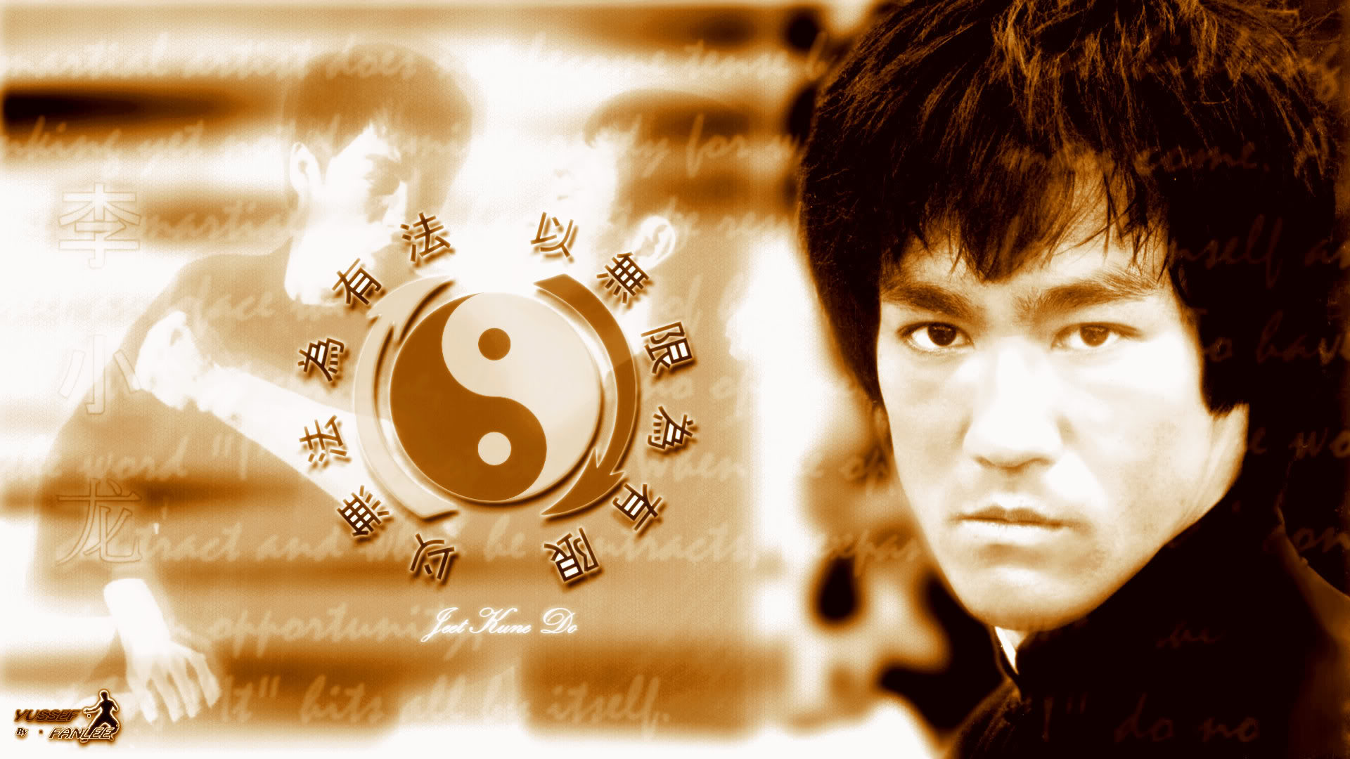 Free Download Bruce Lee Enter The Dragon Wallpapers Hd 424595