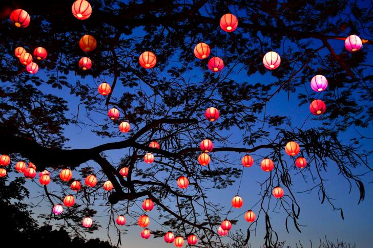 Chinese Lantern Wallpaper Wallpapersafari