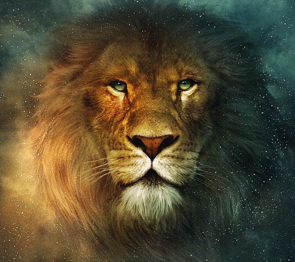 Free Download Download Attractive Animated Lion Wallpapers For All Tablet Pcs 960x854 For Your Desktop Mobile Tablet Explore 46 Lion Galaxy Wallpaper Mac Os X Lion Wallpaper Mac Galaxy