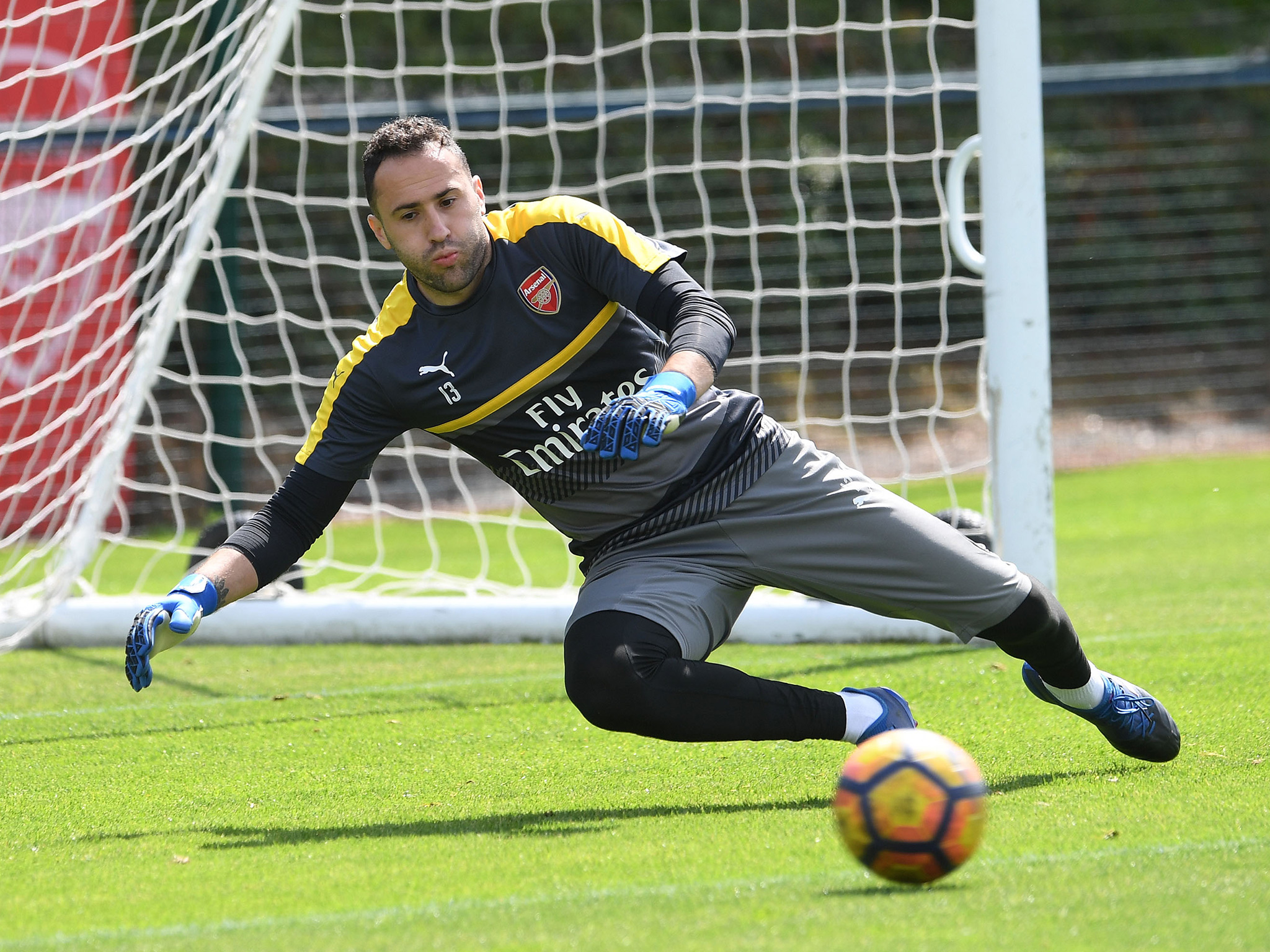 David Ospina Wallpapers Widescreen Images Photos Pictures 2048x1536