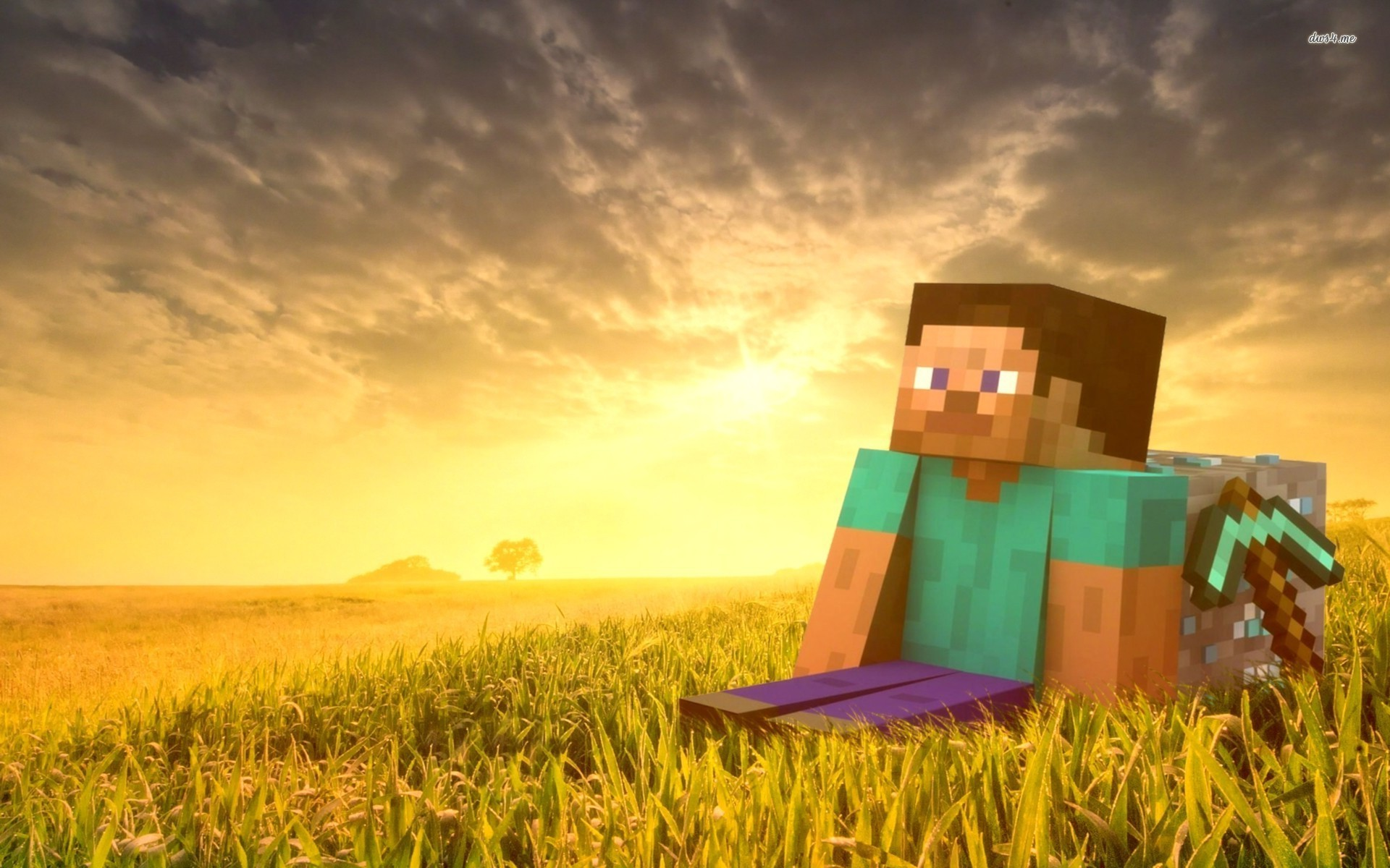 Steve   Minecraft wallpaper   1030056 1920x1200