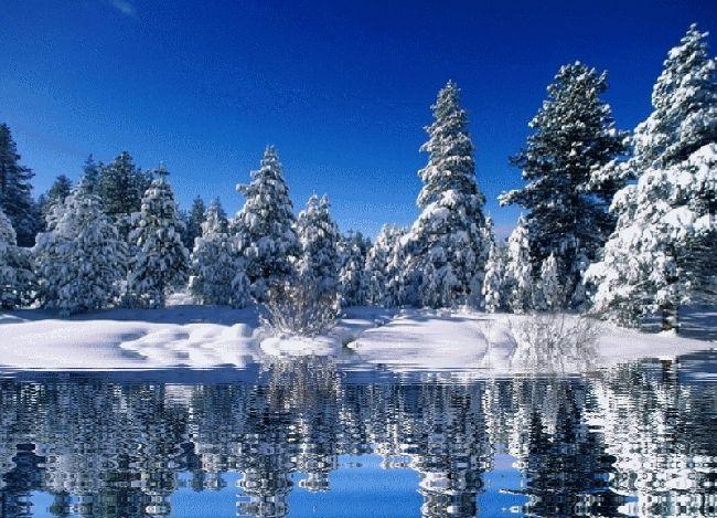 Winters beauty gif WINTERS BEAUTY Pinterest 650x469