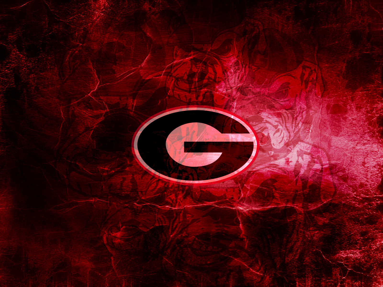 Hd Wallpapers Georgia Bulldogs 640 X 960 31 Kb Jpeg HD Wallpapers 1600x1200