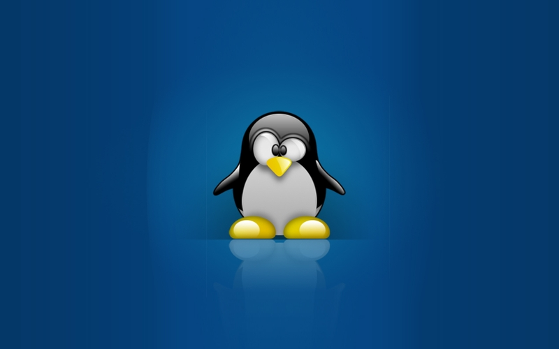 Linuxtux linux tux penguins 1680x1050 wallpaper Linux Wallpaper 800x500