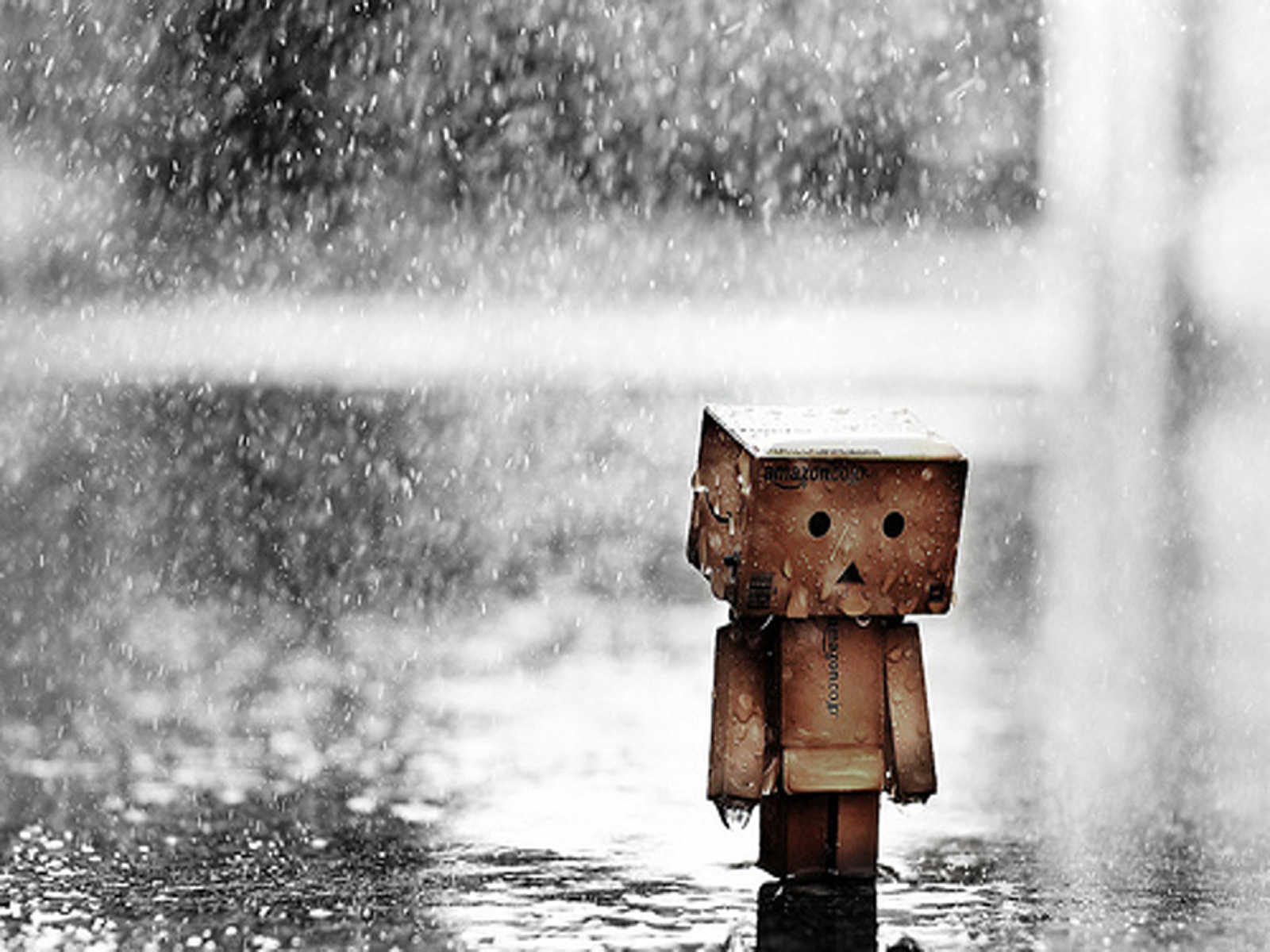 Rain Wallpapers Desktop HD Wallpapers Pictures Images 1600x1200