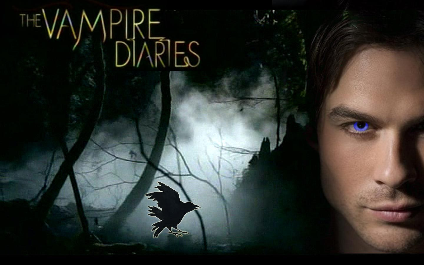 The Vampire Diaries Vampires Wallpaper 18605484 1440x900