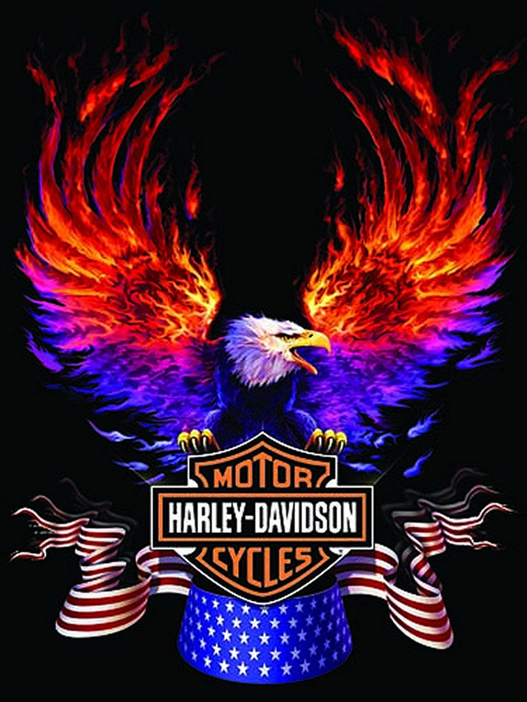 Harley Davidson HD Wallpaper Exclusive Android Wallpaper Bikes 86676 1050x1400