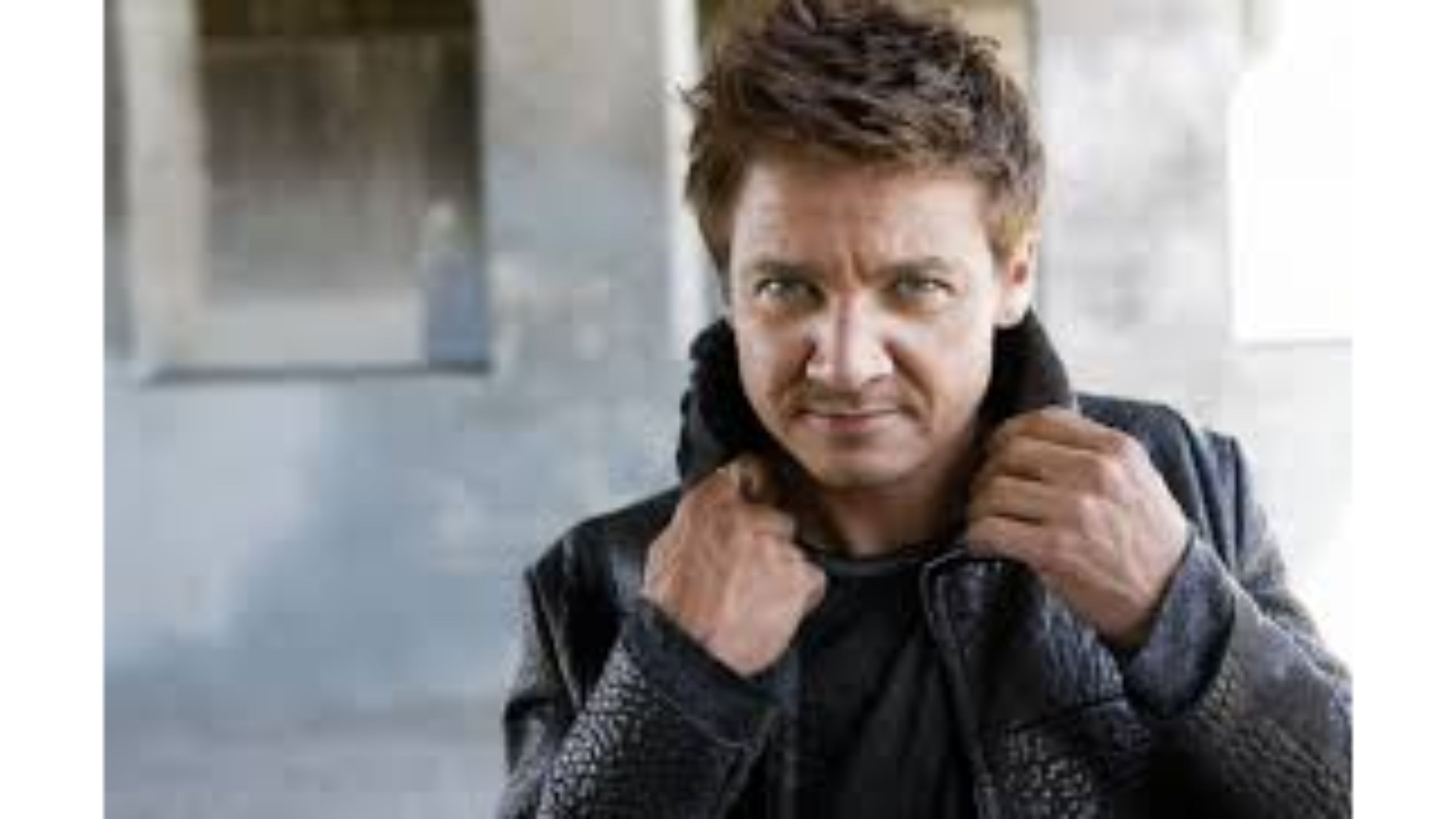 Jeremy Renner Wallpapers and Background Images   stmednet 3840x2160