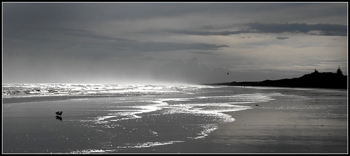 Winter Beach Scenes Winter beach 720x322