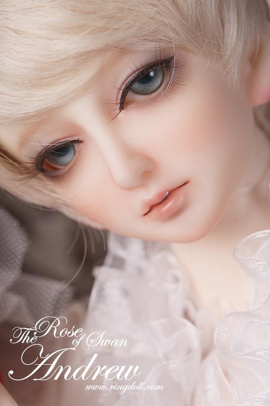 barbie dolls barbie dolls barbie dolls barbie dolls barbie dolls 550x825