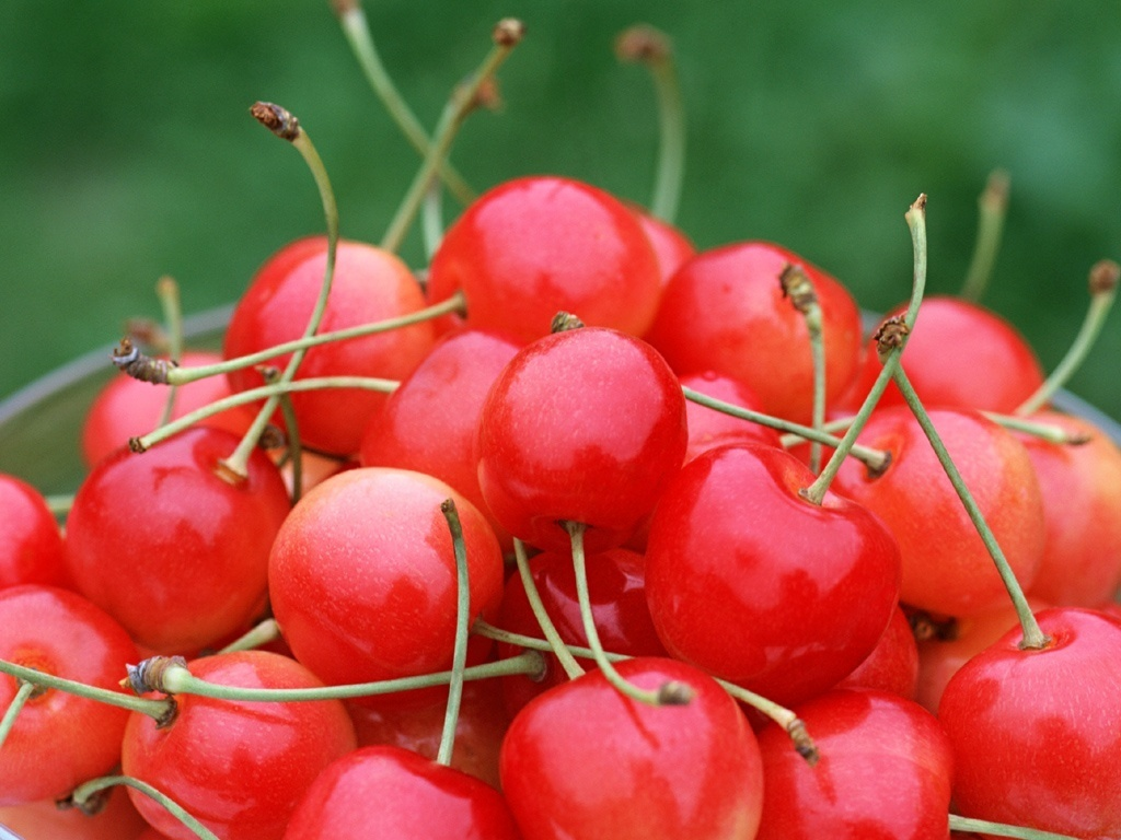 Cherry Fruit Wallpaper   Fruit Wallpaper 6333997 1024x768