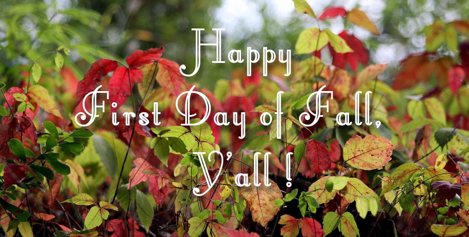 Southern Lagniappe Happy First Day of Fall 1580x799