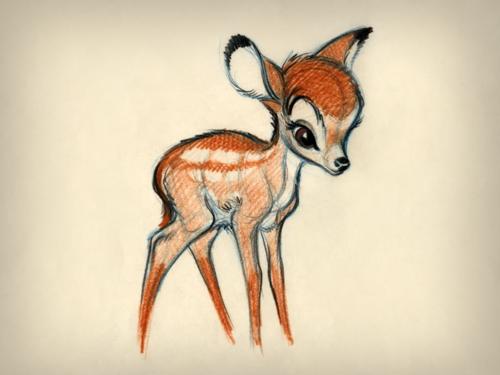bambie on Tumblr 500x375