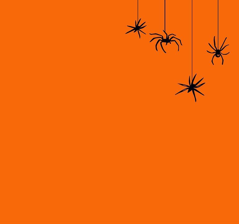 Halloween Background Orange   image on Pixabay 768x720
