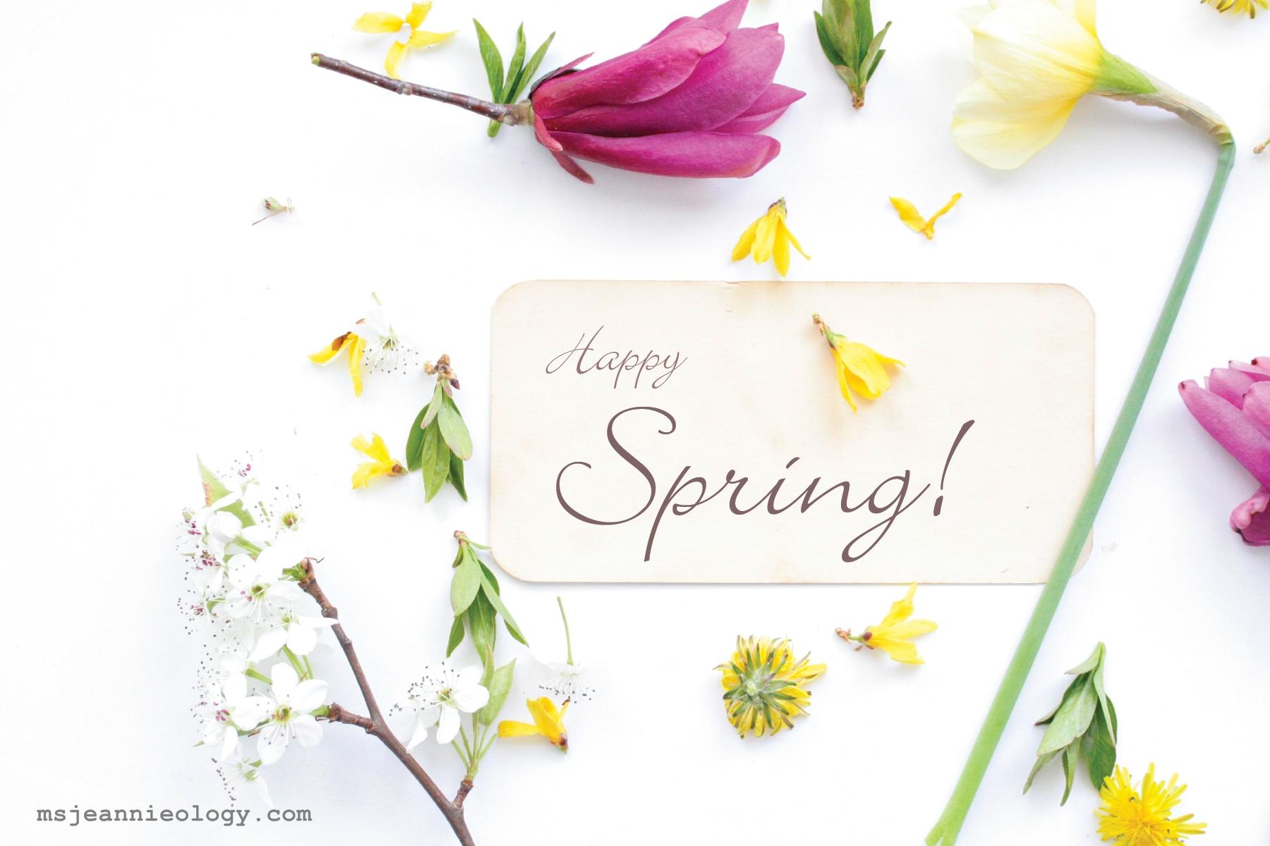 Happy Spring Day Wallpaper wwwpixsharkcom   Images 1800x1200