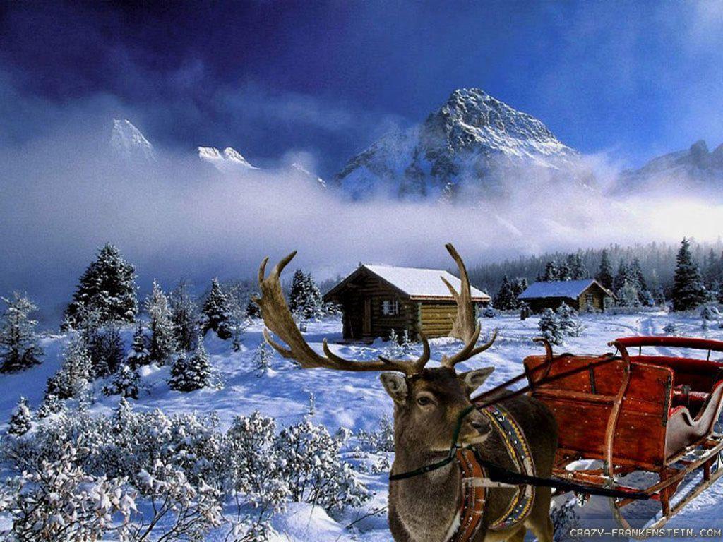 Winter Wallpapers Scenes 1024x768