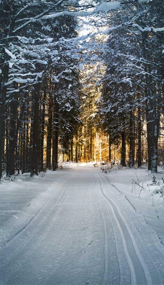 Beautiful Winter Iphone Wallpaper 11   Idea Wallpapers iPhone 577x1001