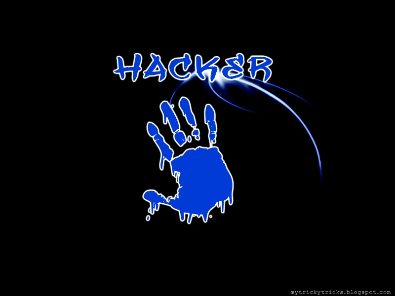 hacking wallpapers wallpapers on hackinghacking attitude hacker 800x600