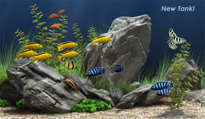 Dream Aquarium Screensaver Mac 700x409