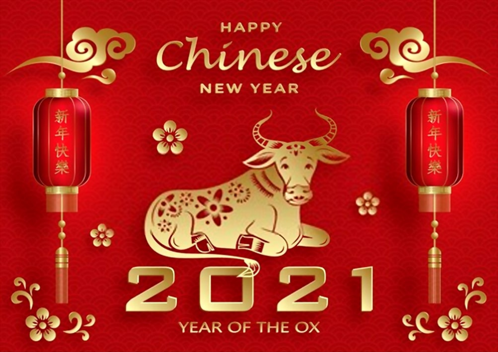 Chinese New Year 2021 Wallpaper Happy Year of Ox 2021 Cow 1000x706