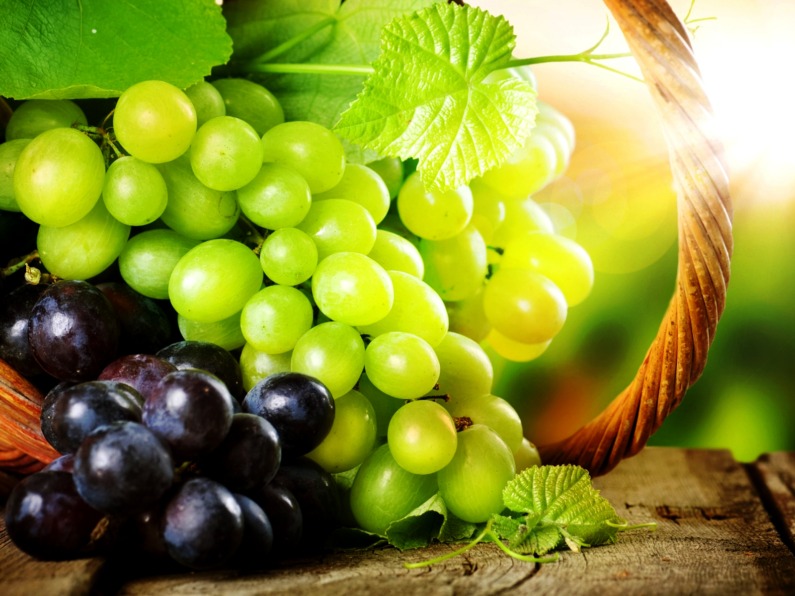 Grapes Macro Fruit Photography HD Wallpapers HQ Wallpapers 1600x1200