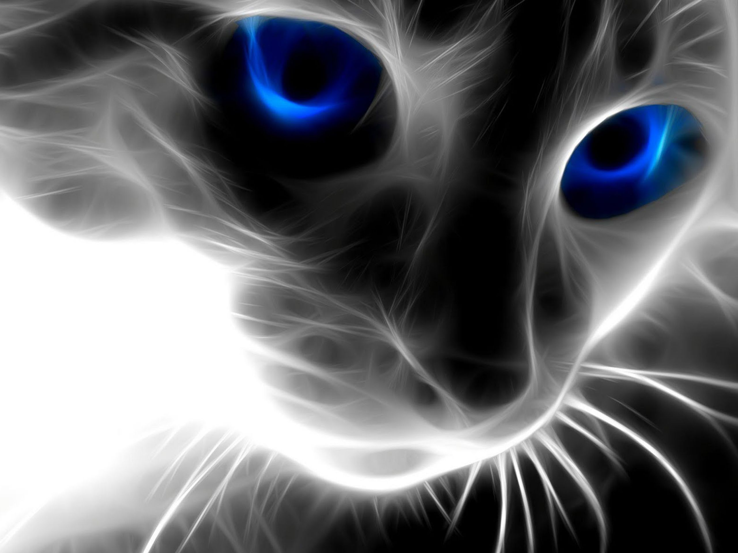 animals cat wallpapers latest1 3d abstract wallpaperpicturesphotos 2560x1920