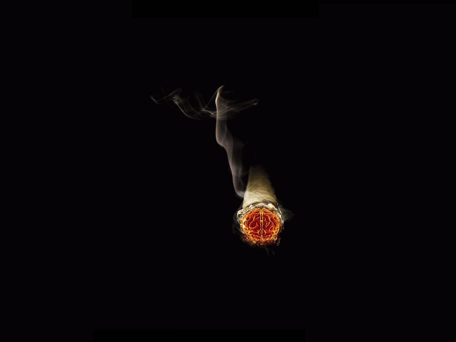 cigar smoke brains artwork deep thoughts HD Wallpaper 1600x1200